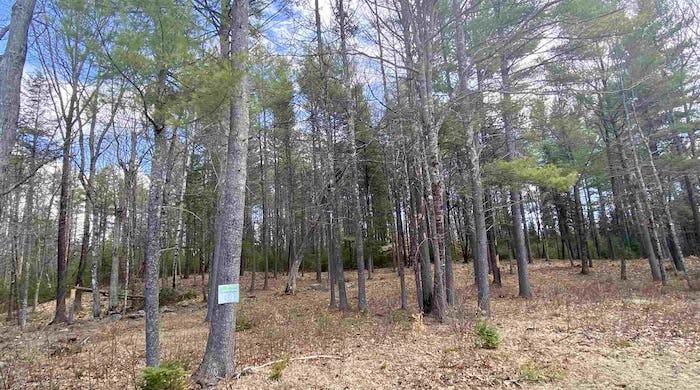 #34 Blake Trail lot 34